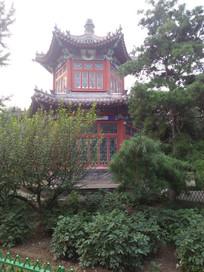 树木掩映下的中国传统古亭子