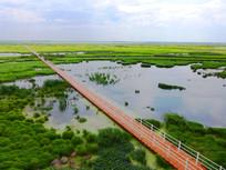 雁窝岛湿地
