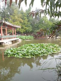中国式传统园林景观