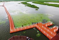 最美湿地 雁窝岛