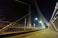 惠州合生大桥的拉索