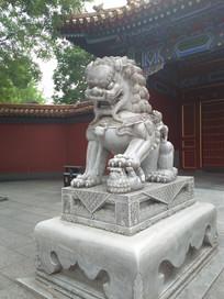 老北京石狮子特写