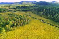 森林草甸小溪风景 (航拍)
