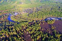 弯曲的森林河(航拍)
