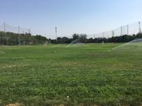 高尔夫练习场草地