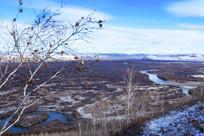 额尔古纳湿地初冬风景