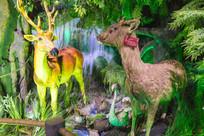 鹿标本展览