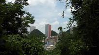 森林城市清镇