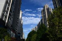 世纪城福州街高楼