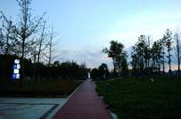 傍晚的健康步道