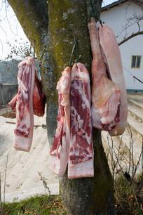 挂在树上的肉块