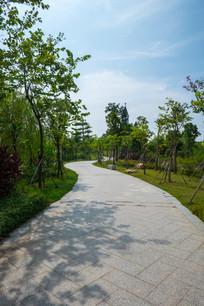 鹿江公园的小路