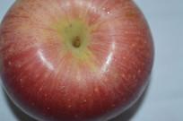苹果静物拍摄