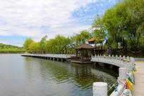 湖畔石桥垂柳