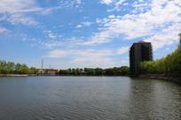 蓝天白云下的金湖风景