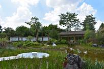 五象湖公园园林一角