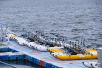 海岛沙滩游艇