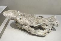 披毛犀头化石
