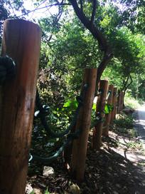 绳索木质围栏