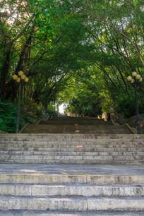 丰山公园山路