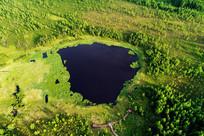 航拍森林湖