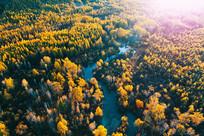 茫茫秋季林海暮色河流 (航拍)