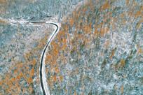 秋季林海雪景 (航拍)