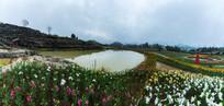 香水百合种植园