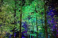 长白山大戏台河景区灯光树林