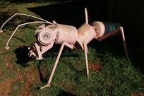 爬在地上的金属废料蚂蚁雕塑