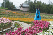 香水百合培植园
