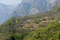 大山里的村落