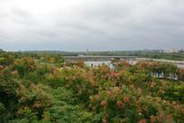 温泉河湿地公园