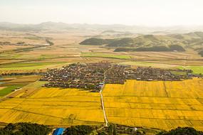 金色稻田与村庄