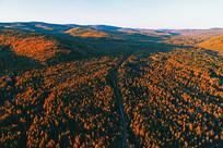 秋季林海暮色下的山路 (航拍)