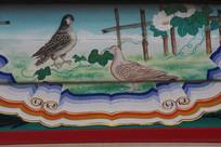 房梁彩绘画农家鸽子