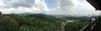远眺广州城市全景图
