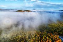 云雾山林风景 (航拍)