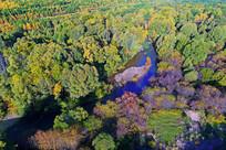 森林河秋色(航拍)