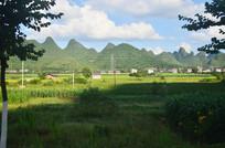 山村田野风景图片
