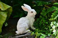 小兔子雕塑