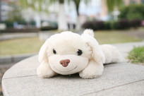 布娃娃-狗狗