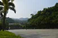公园里的篮球场