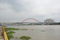 广州珠江金沙洲桥梁