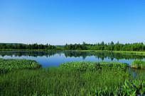 林海之中的湖泊