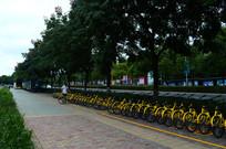 贵阳兴筑路停放的共享单车
