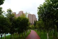 贵阳自行车专用通道