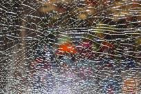 碎裂的钢化玻璃