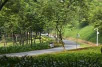 永泰乒乓体育公园 步行道