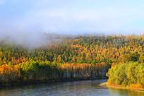 林海河流 树林秋色